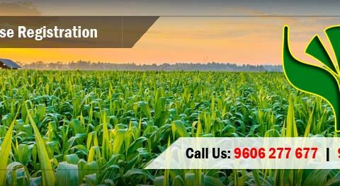 APEDA Registration Consultants for Agricultural and Processed Food Products Exports.